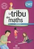 Christophe Demagny et Jean-Pierre Demagny - La tribu des maths CM2 - Cahier de géométrie, Programmes 2008.