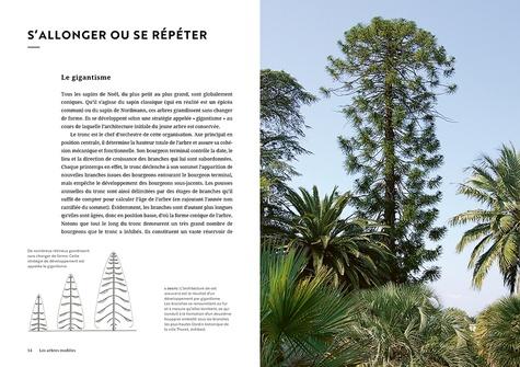 Face aux arbres. Apprendre à les observer pour les comprendre  édition revue et augmentée