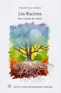 Christophe Drénou - Les Racines - Face cachée des arbres.