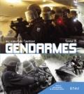 Christophe Dubois - Gendarmes - Tome 3.