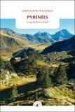 Christophe Houdaille - Pyrénées - La grande traversée.