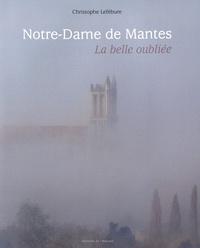 Christophe Lefébure - Notre-Dame de Mantes - La belle oubliée.