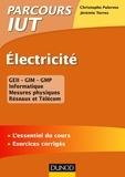 Christophe Palermo et Jérémie Torres - Electricité.