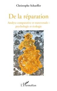 Christophe Schaeffer - De la réparation - Analyse comparative et transversal : psychologie et écologie.