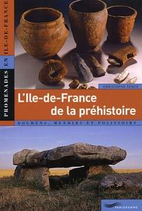 Christophe Sence - L'Ile-de-France de la préhistoire.
