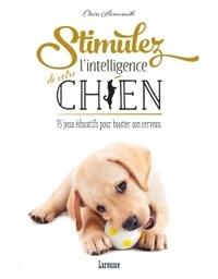 Deedr.fr Stimulez l'intelligence de votre chien Image
