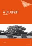 Claude Faber - A ciel ouvert.