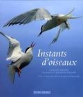 Claude Feigné et Jacques Gillon - Instants d'oiseaux.