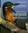 Claude Feigné - Les plus beaux oiseaux de France.