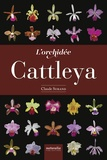 Claude Surand - L'orchidée Cattleya.