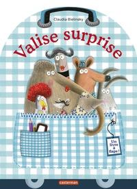 Rhonealpesinfo.fr Valise surprise - Un livre a flaps! Image