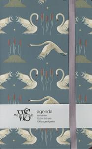Claudia Bordin - Agenda Cygnes.