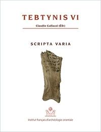 Claudio Gallazzi - Tebtynis - Volume 6, Scripta varia : textes hiéroglyphiques, hiératiques, démotiques, araméens, grecs et coptes sur différents supports.