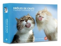 Collectif - Agenda calendrier Drôles de chats.