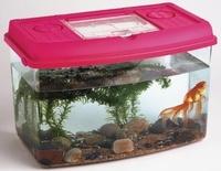 Collectif - Aquarium-vivarium.