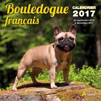 Histoiresdenlire.be Calendrier bouledogue français Image