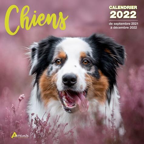 Calendrier Concours Chien De Troupeau 2022 Calendrier Chiens 2022 PDF   zahelpmisrirustcler1