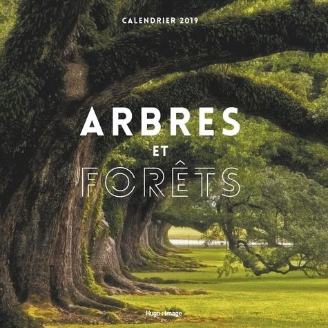 Collectif - Calendrier mural arbres et forêts.