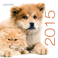 Galabria.be Calendrier mural Chats et chiens 2015 Image