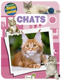 Collectif - Chats.