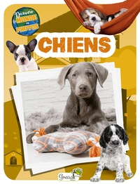 Collectif - Chiens.