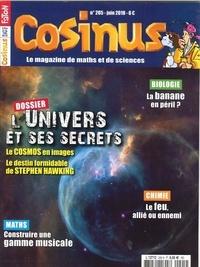 Collectif - Cosinus N°205 L'univers et ses secrets - juin 2018.