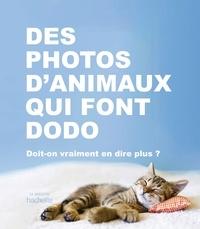 Collectif - Des photos d'animaux qui font dodo - Doit-on vraiment en dire plus ?.