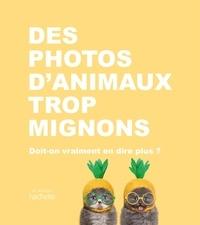 Collectif - Des photos d'animaux trop mignons - Doit-on vraiment en dire plus ?.