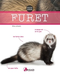 Collectif - Furet.