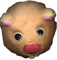 Collectif - Harry le hamster se couche trop tard.