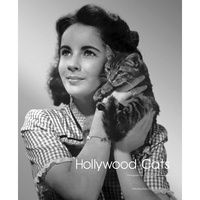 Collectif - Hollywood cats.