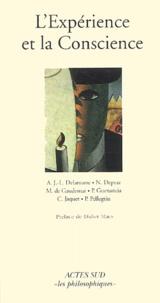 Collectif et Martine De gaudemar - L'Expérience et la Conscience.