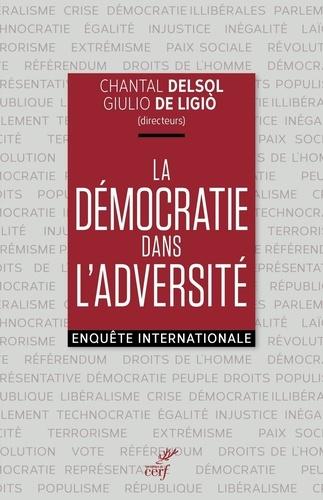 La démocratie dans l'adversité. Enquête internationale