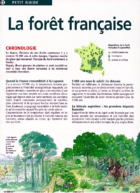 Galabria.be LA FORET FRANCAISE Image