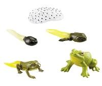 Collectif - La grenouille.