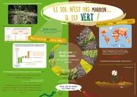 Accentsonline.fr Le sol n'est pas marron, il est vert! Image