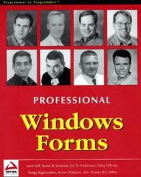 Professional Windows Forms.pdf