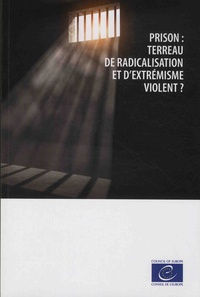 Ucareoutplacement.be Prison : terreau de radicalisation et d'extrémisme violent ? Image