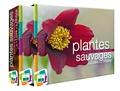 Conservatoire Massif Central - Plantes sauvages de la Loire et du Rhône - Atlas de la flore vasculaire.