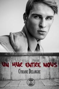 Cyriane Delanghe - Un mur entre nous.