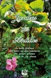 Cyril Exbrayat et André Exbrayat - Jardins des Antilles.