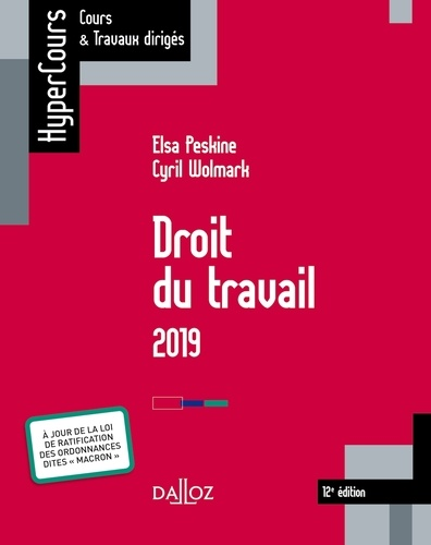 Droit du travail 2019 - Cyril WolmarkElsa Peskine - Format ePub - 9782247178735 - 26,99 €