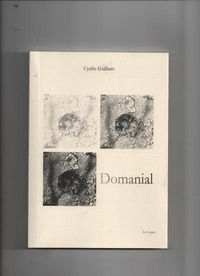 Cyrille Guilbert - Domanial.