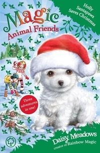 Daisy Meadows - Holly Santapaws Saves Christmas - Special 5.