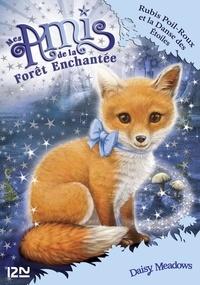 Daisy Meadows - Mes amis de la forêt enchantée Tome 7 : Rubis Poil-Roux et la danse des étoiles.