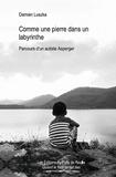Damien Luszka - Comme une pierre dans un labyrinthe - Parcours d'un autiste Asperger.