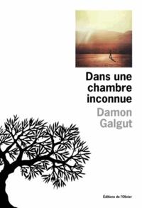 Damon Galgut - Dans une chambre inconnue.