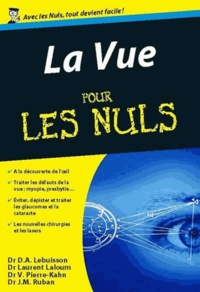 Dan-Alexandre Lebuisson et Laurent Laloum - La vue pour les Nuls.
