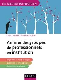 Dana Castro et Clémence Guinot - Animer des groupes de professionnels en institution.