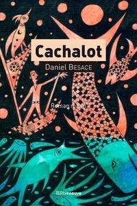 Daniel Besace - Cachalot.